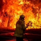 Authors raise money for Australia Brushfire Crisis