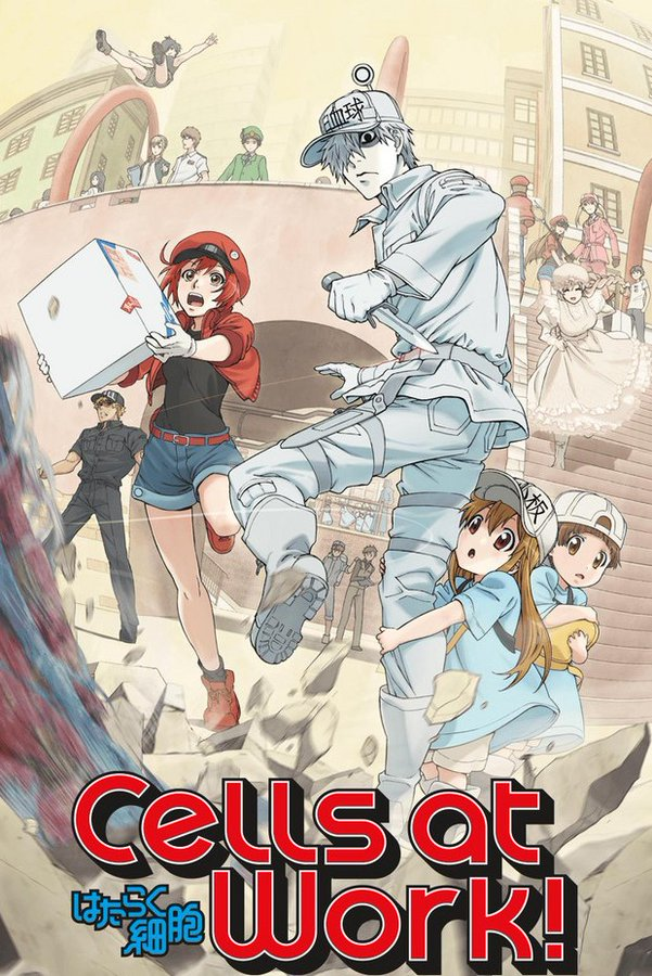 Cells at work2