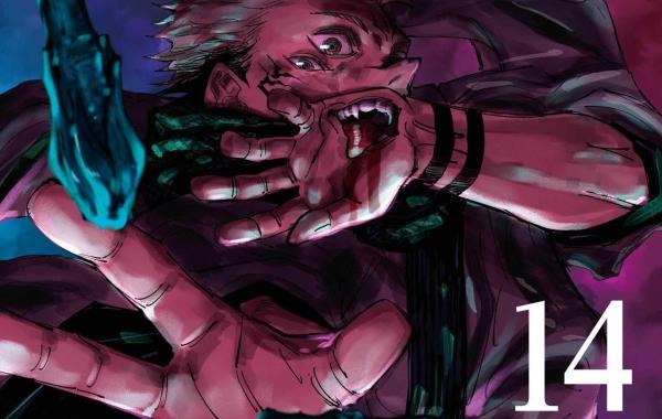 Jujutsu Kaisen Volume 14 Cover 2